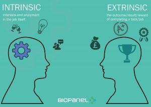 intrinsic and extrinsic